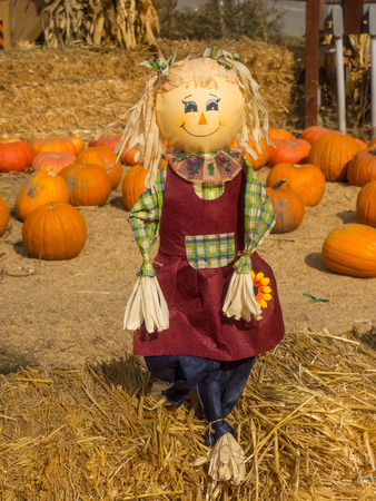 disturbing: Scarecrow is a decoy or mannequin in the shape of a human. It is usually dressed in old clothes and placed in open fields to discourage birds such as crows or sparrows from disturbing and feeding on recently cast seed and growing crops.