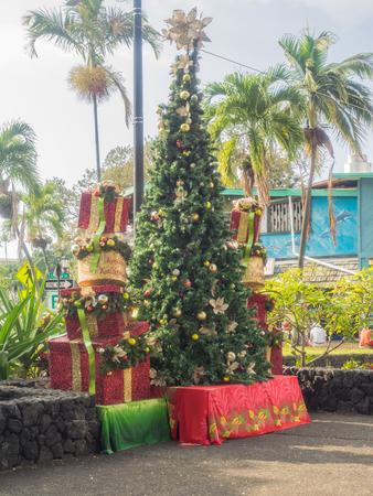 christmas tree decoration: Christmas tree at Alii Drive in Kailua-Kona on Hawaii Island.