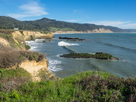 pinniped: Ano Nuevo State Park is a state park of California, USA, encompassing Ano Nuevo Island and Ano Nuevo Point, which are known for their pinniped rookeries.