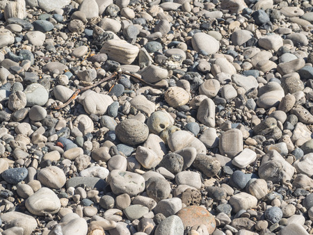 shingle: Pebbles on a shingle beach in Ano Nueavo State Park. Stock Photo