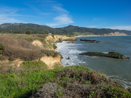 nuevo: Ano Nuevo State Park is a state park of California, USA, encompassing Ano Nuevo Island and Ano Nuevo Point, which are known for their pinniped rookeries.