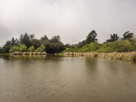 daniels: Overlooking Alpine Pond at Skyline Ridge Open Space Preserve, the David C. Daniels Nature Center features imaginative displays that both children and adults can enjoy.
