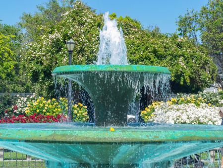 avenues: San Jose Municipal Rose Garden is a rose garden located at the intersection of Naglee and Dana Avenues, San Jose, California, in the Rose Garden neighborhood.