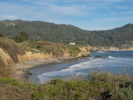 wildlife preserve: Ano Nuevo State Park is a state park of California, USA, encompassing Ano Nuevo Island and Ano Nuevo Point, which are known for their pinniped rookeries.