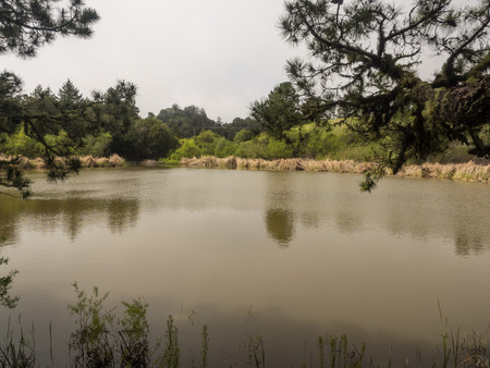 enjoy space: Overlooking Alpine Pond at Skyline Ridge Open Space Preserve, the David C. Daniels Nature Center features imaginative displays that both children and adults can enjoy.