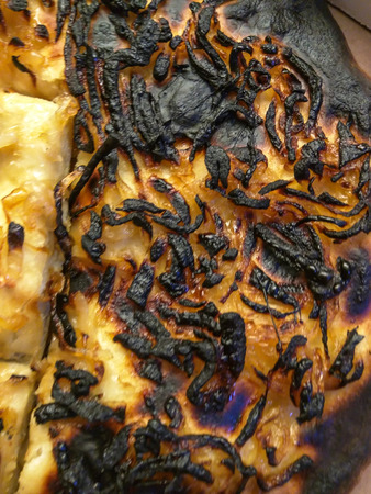 charred: Homemade pizza burnt after keeping it too long in a oven.