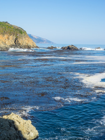 ridgeline: Partington Cove holds a special piece of Big Sur history. Much of the tan bark and lumber was shipped out of this cove. There is a tunnel that goes through the ridgeline that opens into a beautiful cove which still has parts of the shipping tools bolted t