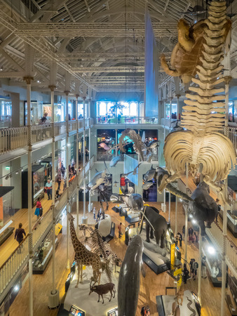 incorporates: National Museums of Scotland incorporates the collections relating to Scottish antiquities, culture and history and collections covering science and technology, natural history, and world cultures.