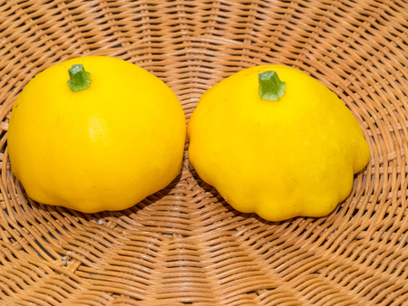 scalloped: Pattypan squash is a variety of summer squash (Cucurbita pepo) notable for its small size, round and shallow shape, and scalloped edges, somewhat resembling a small toy top, or flying saucer.