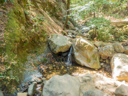 Uvas Canyon County Park is natural park is located in upper Uvas Canyon on the eastern side of the Santa Cruz Mountains, west of Morgan Hill, California. Stock Photo