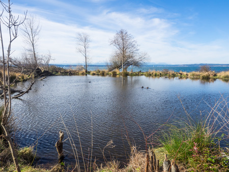 Golden Gardens Park is a public park in Ballard, a neighborhood in Seattle, Washington. The park includes wetlands, beaches, hiking trails, and picnic and playground areas. Stock Photo