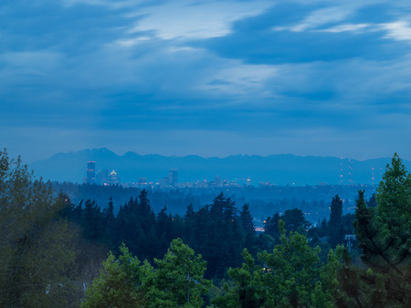 Seattle skyline and forest.