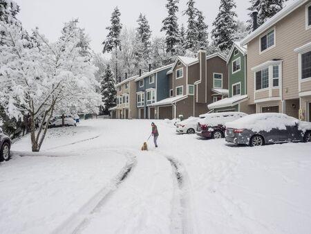 Snowpocalypse in February in Bellevue,WA