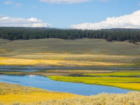 Hayden Valley is a large, sub-alpine valley in Yellowstone National Park straddling the Yellowstone River between Yellowstone Falls and Yellowstone Lake. 스톡 콘텐츠