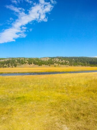 Fountain Flat Drive is the access point for many different activites. At the front of the drive is the Nez Perce Picnic area, situated at the confluence of the Firehole River and Nez Perce Creek.