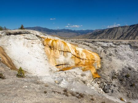 Mammoth Hot Springs is a large complex of hot springs on a hill of travertine in Yellowstone National Park. The hot water that feeds Mammoth comes from Norris Geyser Basin after traveling underground via a fault line that runs through limestone.