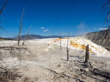 Mammoth Hot Springs is a large complex of hot springs on a hill of travertine in Yellowstone National Park. The hot water that feeds Mammoth comes from Norris Geyser Basin after traveling underground via a fault line that runs through limestone. Фото со стока