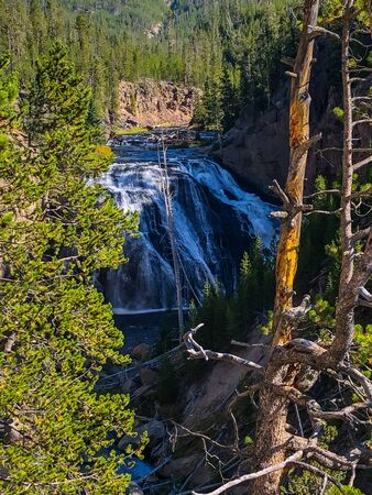 Gibbon Falls is a waterfall on the Gibbon River in northwestern Yellowstone National Park in the United States. Gibbon Falls has a drop of approximately 84 feet (26 m).
