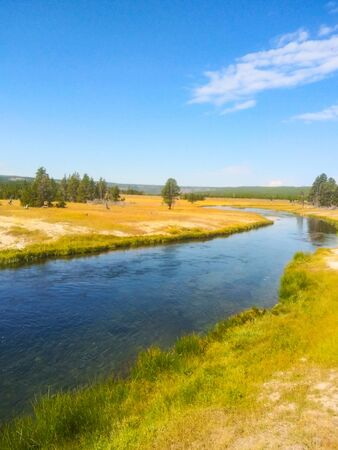 Madison River in Yellowstone National Park is a fly fishing mecca for serious anglers. It is classified as a blue ribbon fishery in Montana and is one of the most productive streams in Montana for brown trout, rainbow trout and mountain whitefish. Banco de Imagens