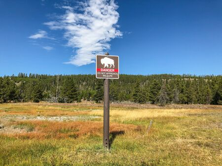 Throughout Yellowstone National Park are signs warning people not to stop and approach large wildlife.