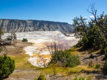 Mammoth Hot Springs is a large complex of hot springs on a hill of travertine in Yellowstone National Park. The hot water that feeds Mammoth comes from Norris Geyser Basin after traveling underground
