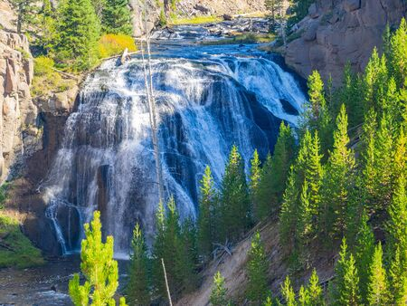 Gibbon Falls is a waterfall on the Gibbon River in northwestern Yellowstone National Park in the United States. Gibbon Falls has a drop of approximately 84 feet (26 m). Archivio Fotografico
