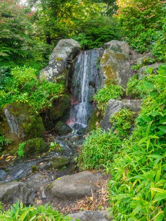 Kubota Garden is a 20-acre (81,000 m²) Japanese garden in the Rainier Beach neighborhood of Seattle, Washington. Major features of the Kubota Garden include the Kubota Terrace, the Bamboo Grove, the Necklace of Ponds, the Mountainside, and the Tom Kubota Stroll Garden. Stock fotó
