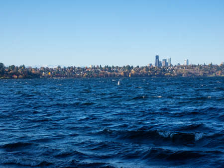 Seward Park is a municipal park in Seattle, Washington, United States. Located in the city neighborhood of the same name, it covers 300 acres (120 ha; 0.47 sq mi).