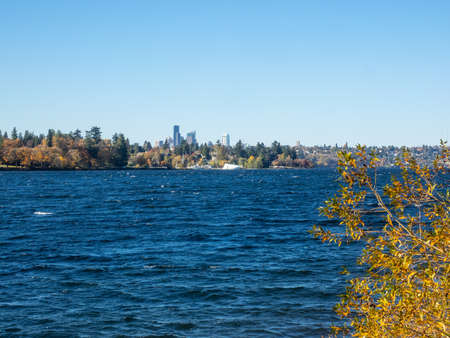 Seward Park is a municipal park in Seattle, Washington, United States. Located in the city neighborhood of the same name, it covers 300 acres (120 ha; 0.47 sq mi). The park occupies all of Bailey Peninsula, a forested peninsula that juts into Lake Washington.