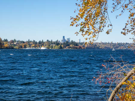 Seward Park is a municipal park in Seattle, Washington, United States. Located in the city neighborhood of the same name, it covers 300 acres (120 ha; 0.47 sq mi). The park occupies all of Peninsula, a forested peninsula that juts into Lake Washington.