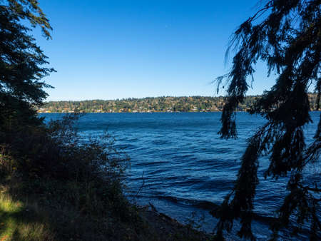 Seward Park is a municipal park in Seattle, Washington, United States. Located in the city neighborhood of the same name, it covers 300 acres (120 ha; 0.47 sq mi). The park occupies all of Bailey Peninsula, a forested peninsula that juts into Lake Washington. Stock fotó