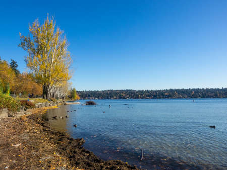 Seward Park is a municipal park in Seattle, Washington, United States. Located in the city neighborhood of the same name, it covers 300 acres (120 ha; 0.47 sq mi). Stock fotó