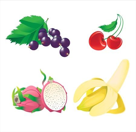 Obst und Beeren Standard-Bild - 9944069