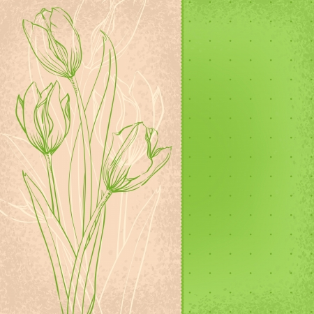 graphic green tulips on old paper Vector