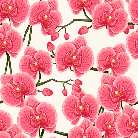 beautiful natural pattern with pink orchids on a white background Vector