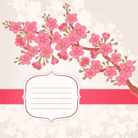 cherry blossom tree: Beautiful card with a branch of apple or cherry blossom and place for text