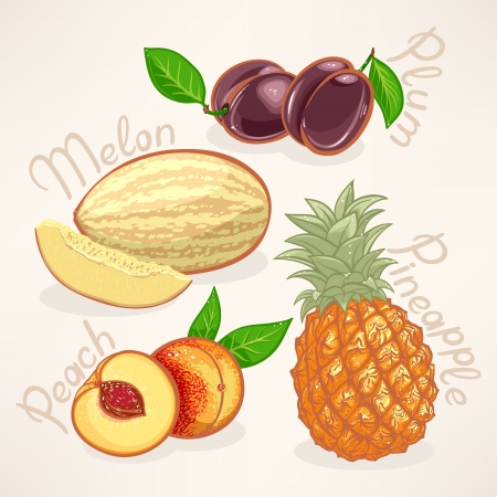 Juicy summer exotic fruits - mango, pear, papaya and orange Vector
