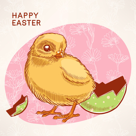 Beautiful easter card with yellow chicken on a pink background with chamomiles Vector