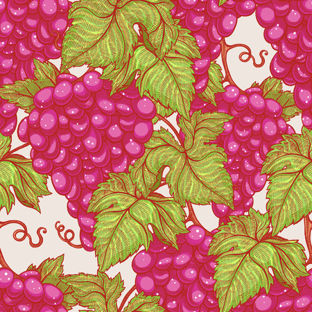 beautiful natural seamless vintage background with bunches of ripe red grapes Vector