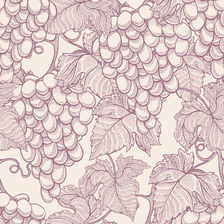 beautiful natural seamless vintage background with hand-drawn bunches of ripe grapes Vector