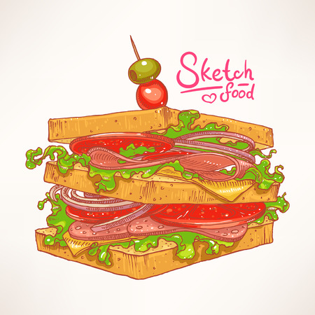 ham sandwich: hand-drawn delicious fresh sandwich with meat, salad and tomato Illustration