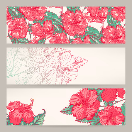 Set of three beautiful banners with pink hibiscus Vector