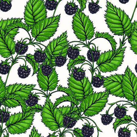 blackberry: Beautiful seamless background with branches of delicious blackberry
