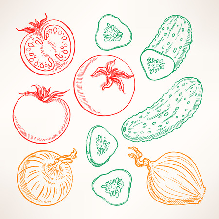 tomatoes: Set with sketch vegetables. Tomatoes, cucumbers, onions