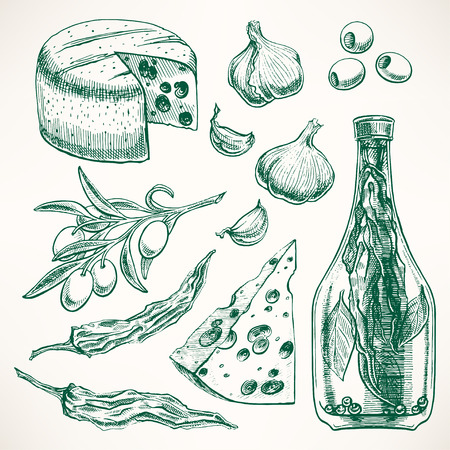 olive branch: Set of spices, cheeses and vegetables. garlic, olives, chili pepper. hand-drawn illustration
