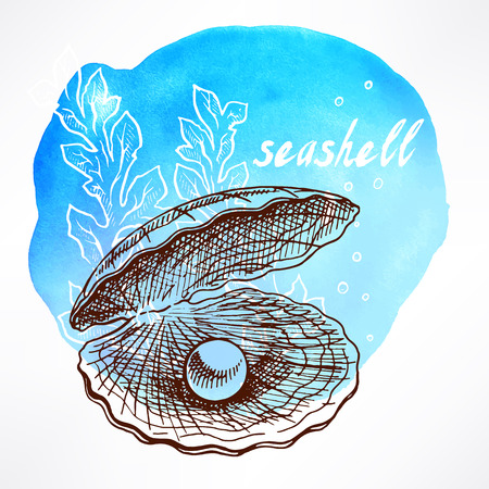 Beautiful watercolor background with hand-drawn seaweed and shell with pearl