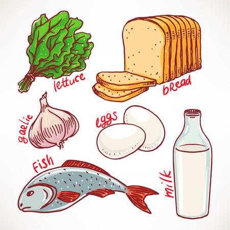 illustration of food: Colecci�n de los productos. dibujado a mano ilustraci�n. Iconos de los alimentos