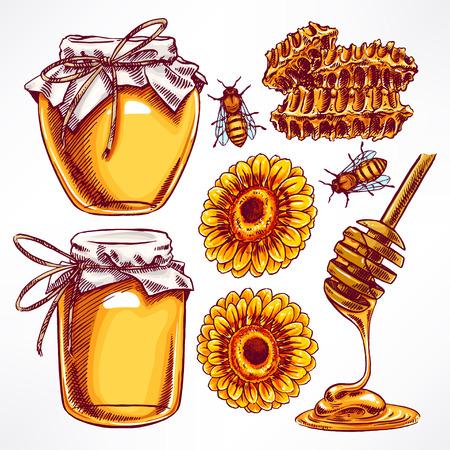 miel de abejas: conjunto de miel. tarros de miel, abejas, panal. ilustración de mano