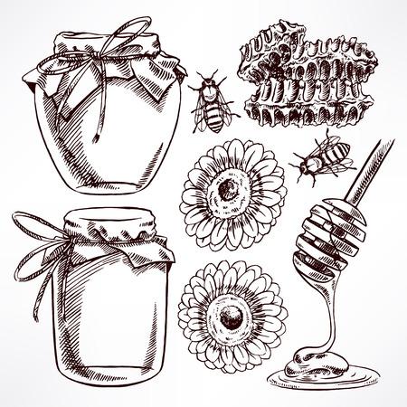 boceto: conjunto de miel boceto. tarros de miel, abejas, panal. ilustración de mano Vectores