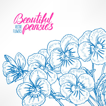 beautiful greeting card with pretty  blue pansies and place for text. hand-drawn illustration Illustration